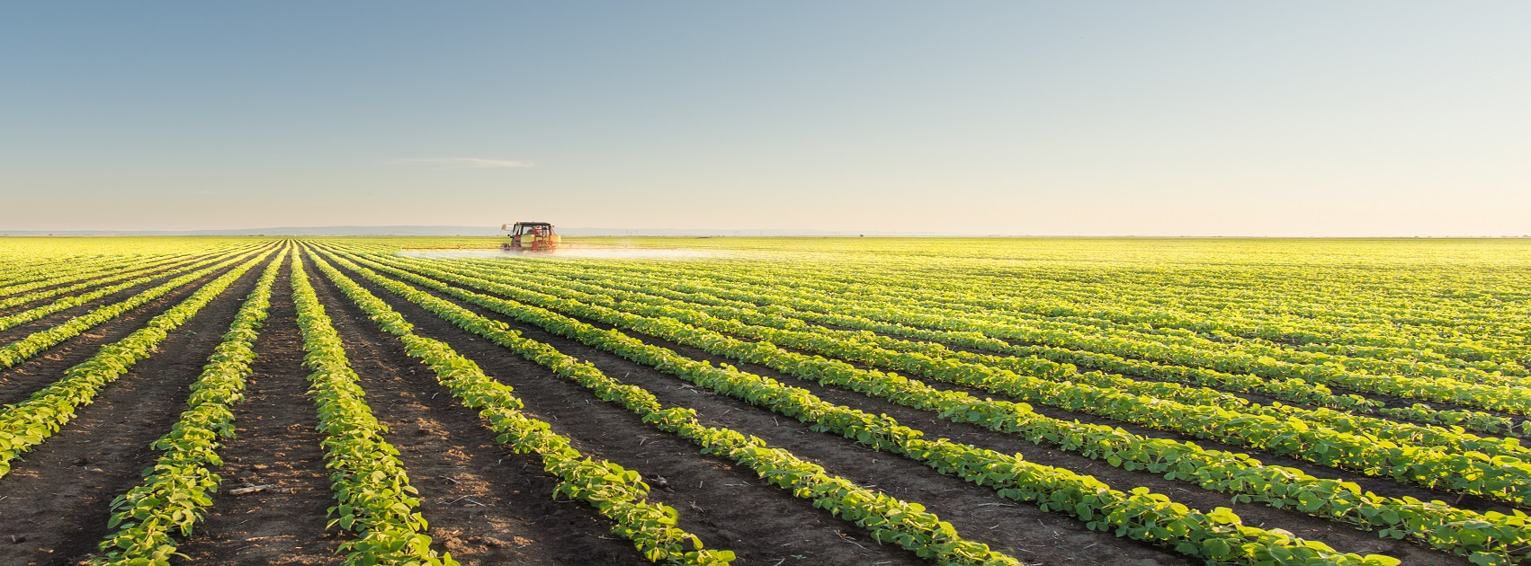 south african farming directory