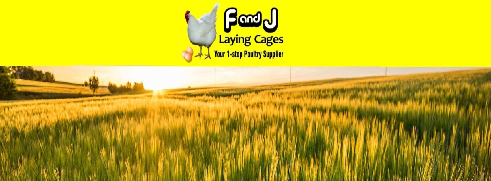 F & J Laying Cages