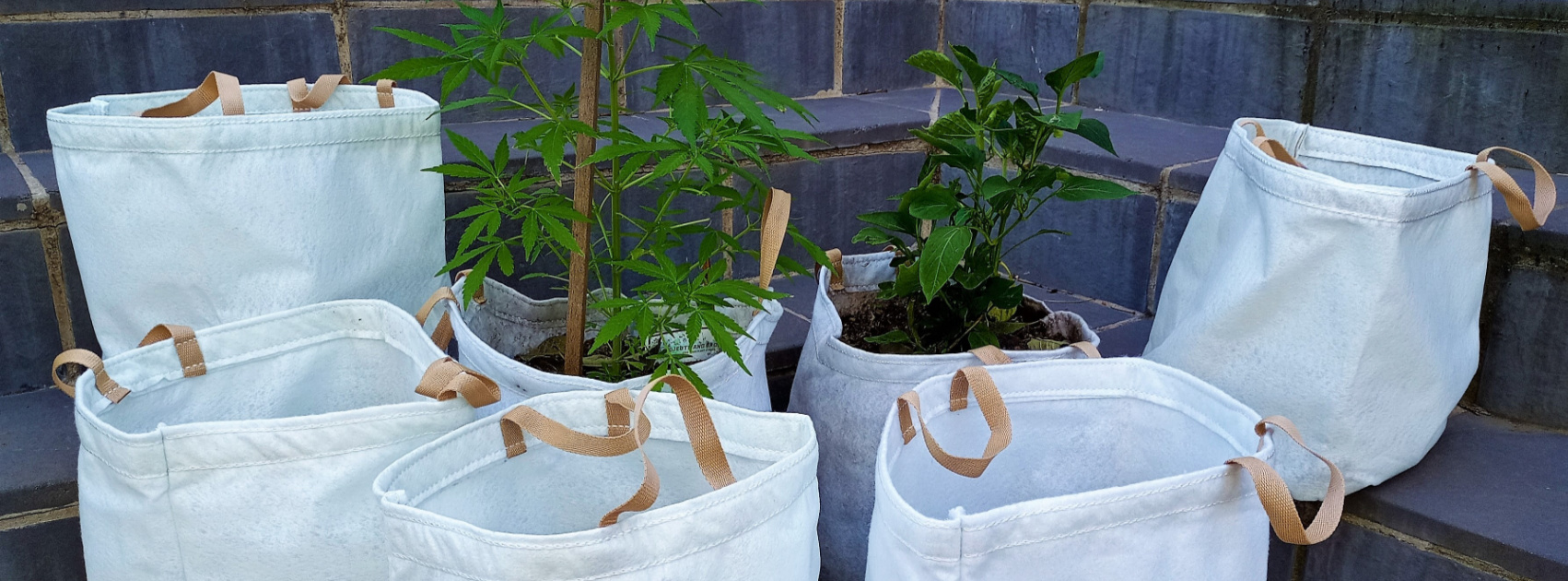 Growing Solutions Products