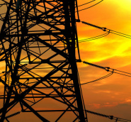 Agrifood SA_What Are the Risks Associated with Power Outages on Your Farm