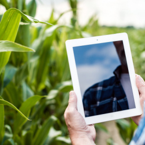 Agrifood_Precision Agriculture