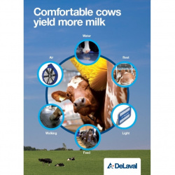 Comfortable cows yield more milk